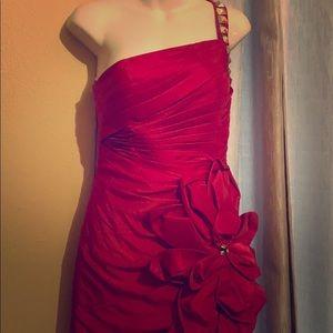 Fushia fit and flare evening dress/prom dress